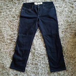 Loft (Ann Taylor) Jeans
